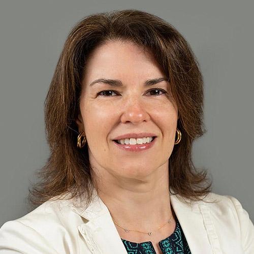Amy Mariani - ProVisors - Boston